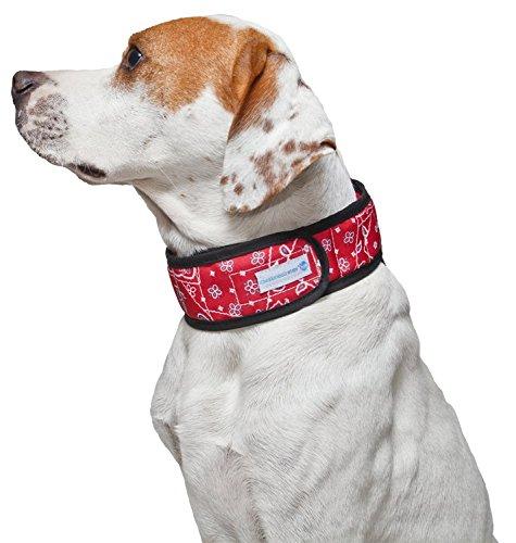 Aqua Coolkeeper Kühlhalsband für Hunde