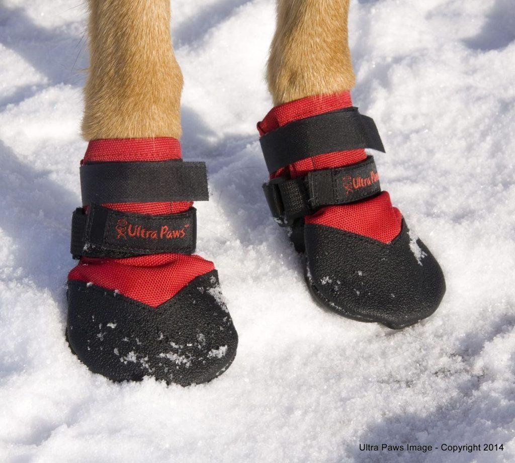 Durable Dog Boots Hundeschuhe Winter