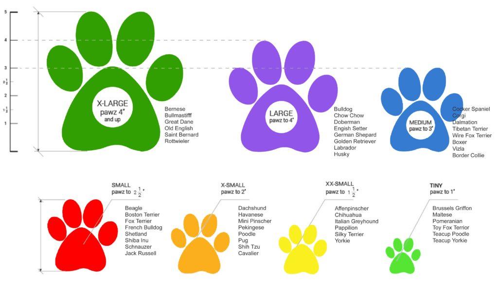 Hundeschuhe PAWZ richtig ausmessen