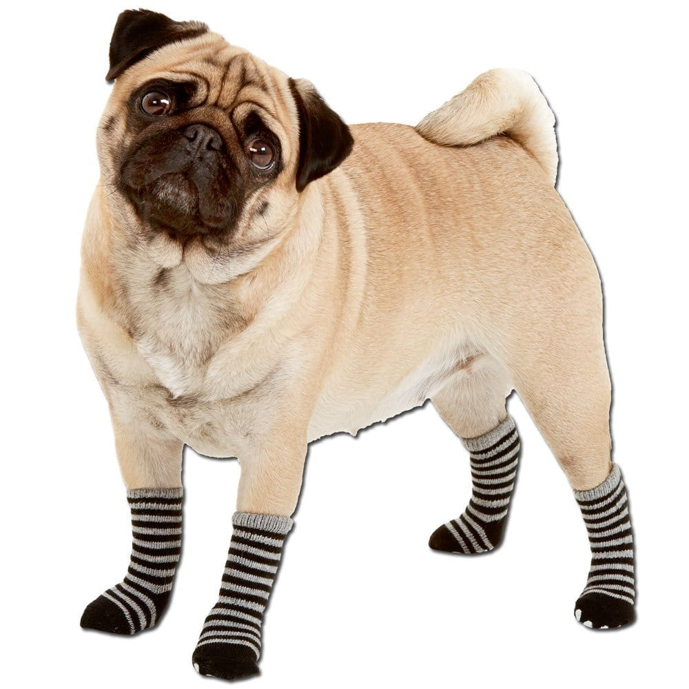 Hundesocken Karlie Doggy Socks