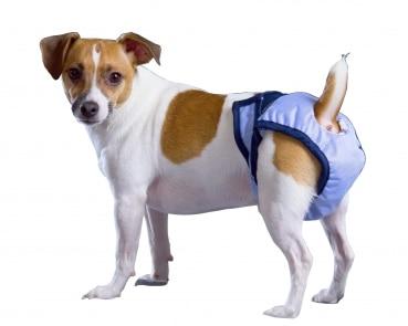 Hundewindel PoochPad