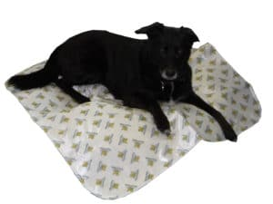Inktontinenzdecke für Hunde