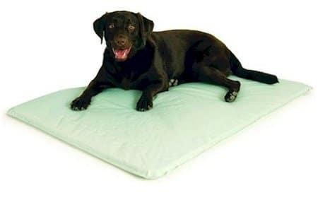 Kühlmatte für Hunde Cool Bed III