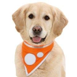Karlie Safety Dog Sicherheitstuch Hunde