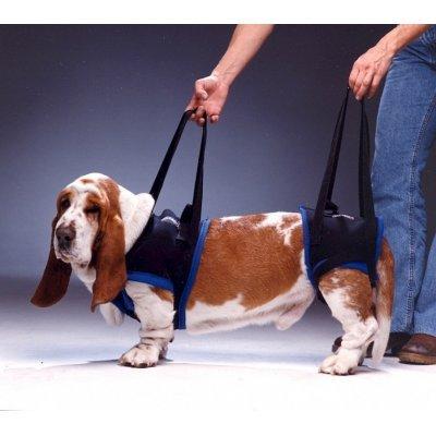 Walkabout Gehhilfe Tragehilfe für Hunde Hinten