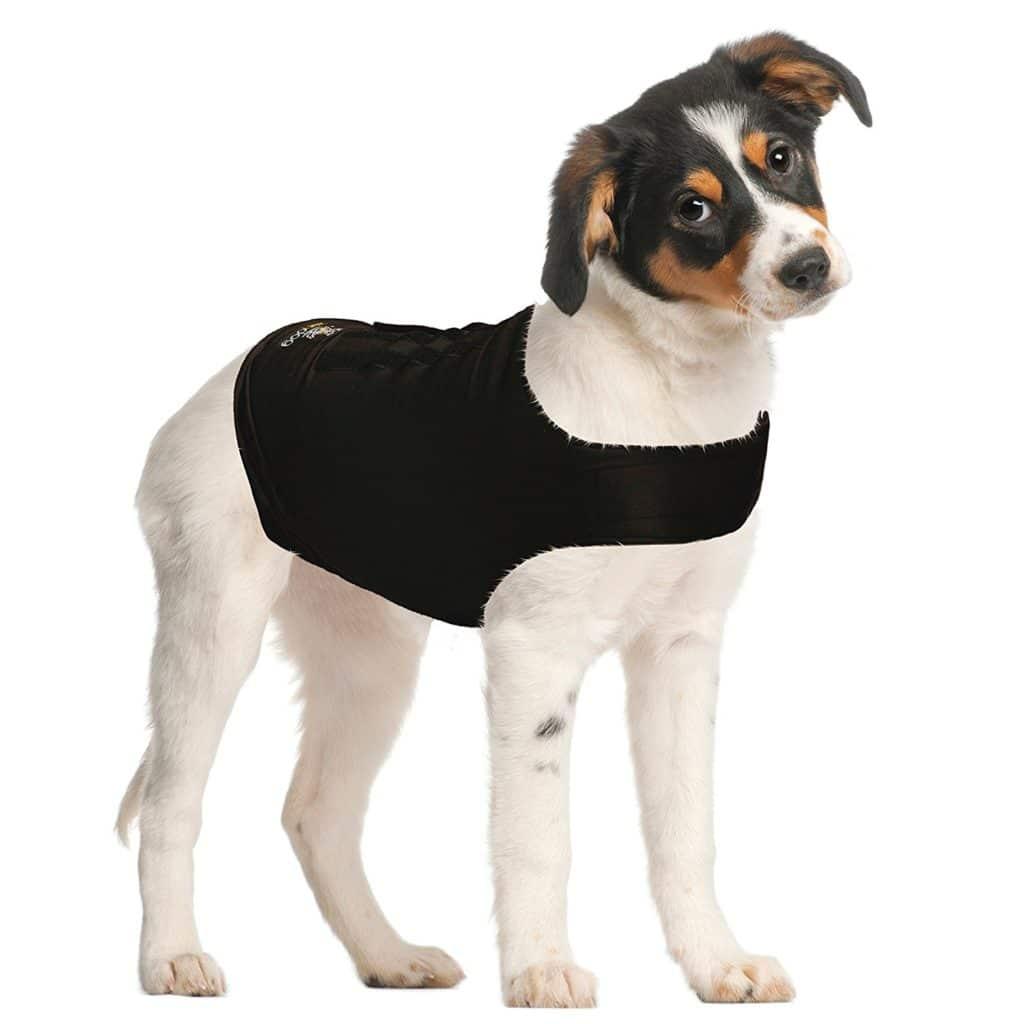 ZenDog Anti-Stressweste für Hunde