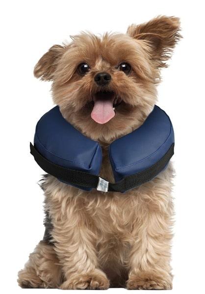 karlie-Aufblasbarer-Halskragen-fuer-Hunde