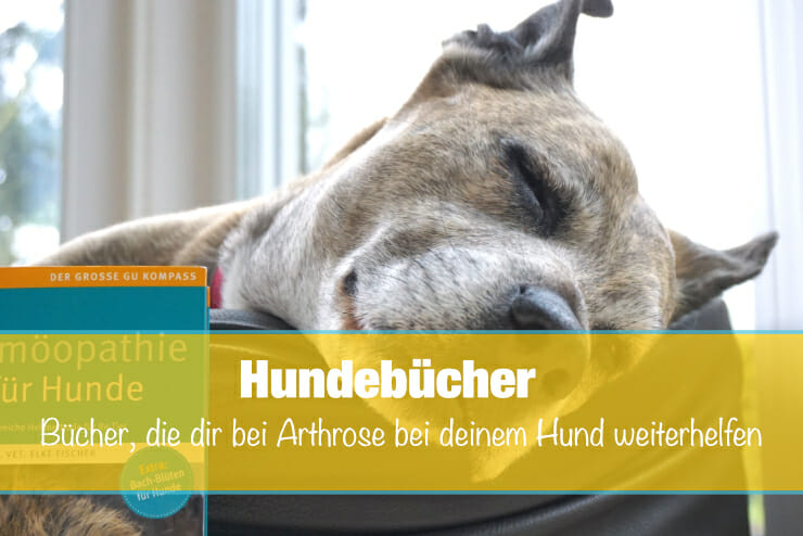 Buch_Hund_Arthrose