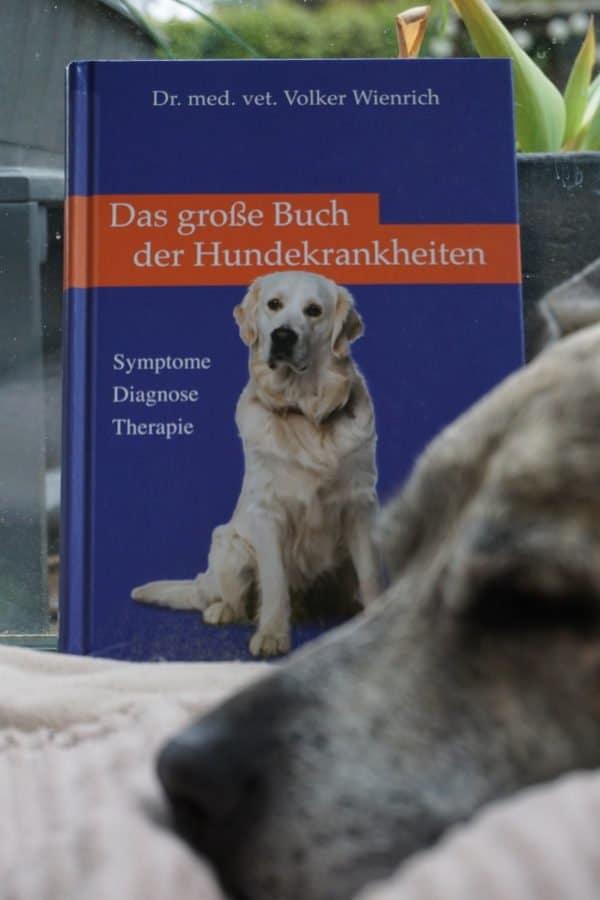 Das-grosse-Buch-der-Hundekrankheiten