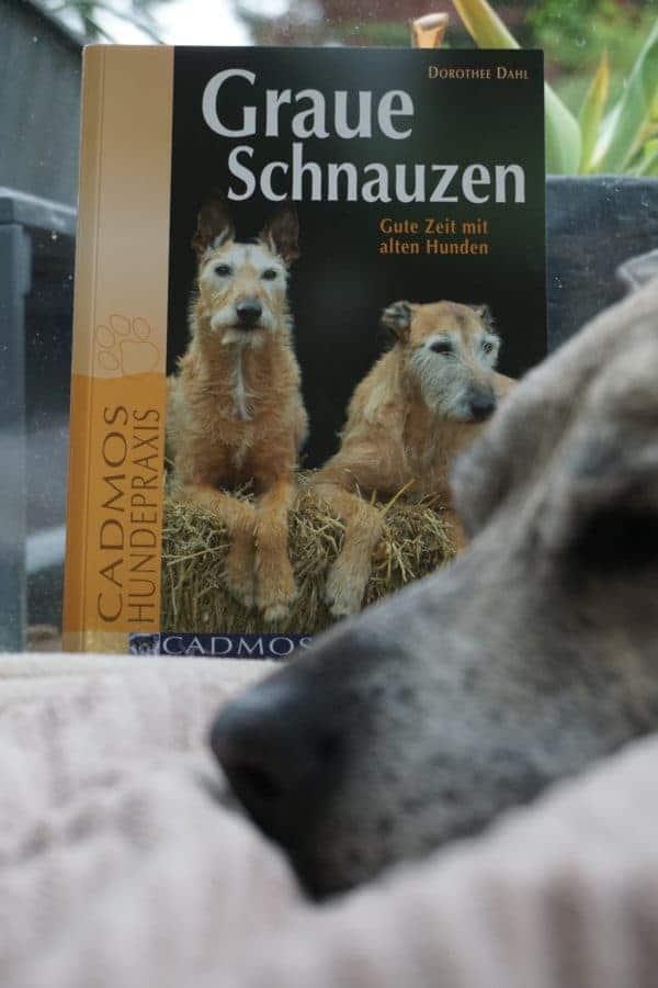 Graue-Schnauzen-Hundebuch0