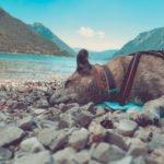 5 Tipps wie dein alter Hund besser mit Hitze klar kommt