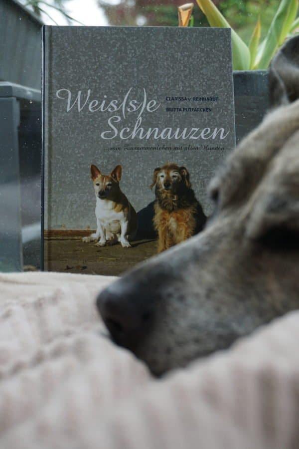 Weisse-Schnauzen-Hundebuch