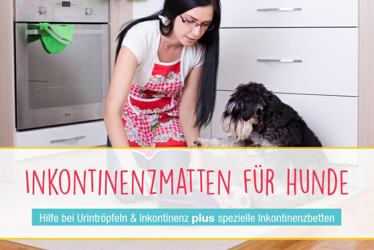 Inkontinenzmatte für den Hund