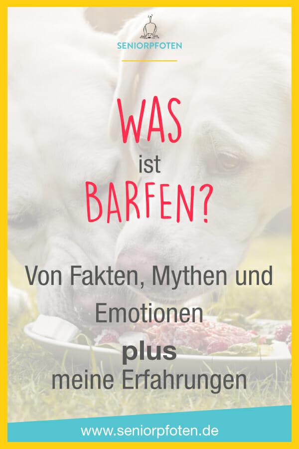 Was ist Barfen? Hundewissen