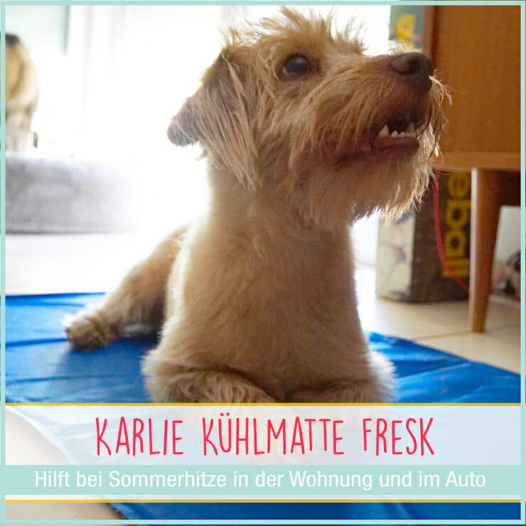 Karlie Fresk Kühlmatte fuer Hunde