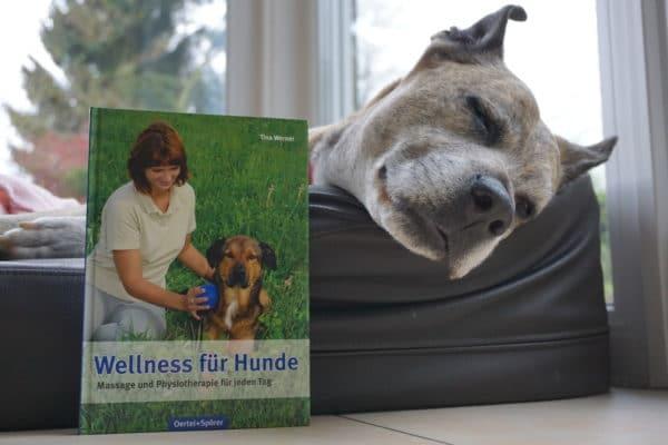 Buch Wellness für Hunde
