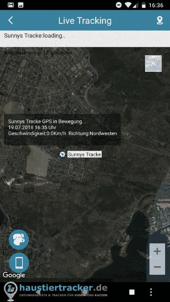 Pettec GPS Tracker Hund Live Tracking
