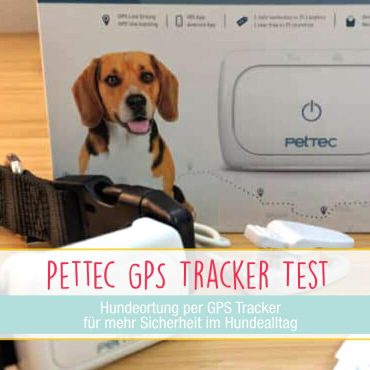Pettec GPS Tracker für Hunde im Test