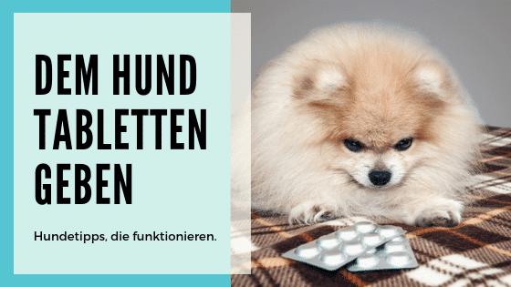 Hund Tabletten Geben Tricks