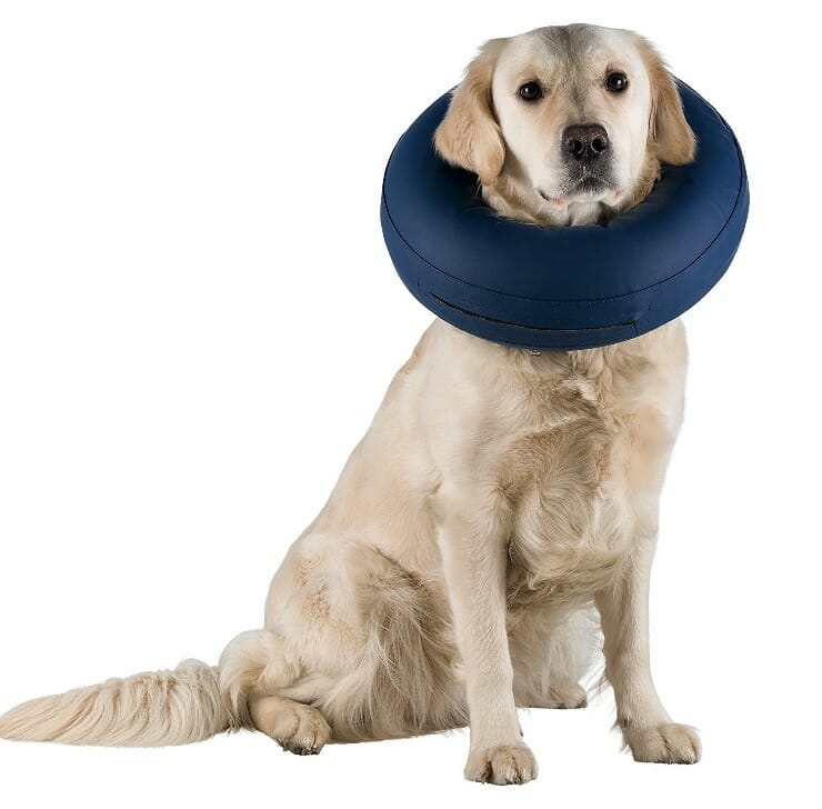Trixie Halskrause Hund