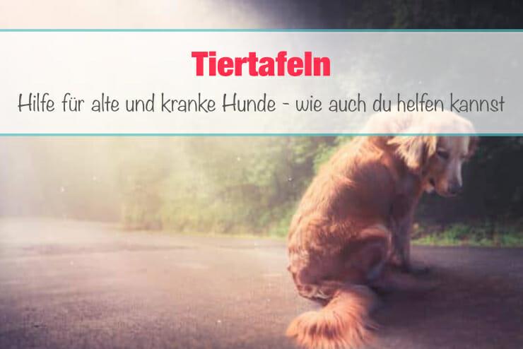 Tiertafel_Hunde