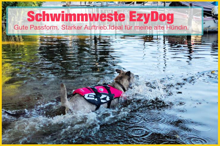 Hundeschwimmweste EzyDog im Test