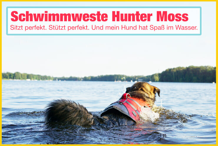 Hundeschwimmweste Hunter Moss im Test