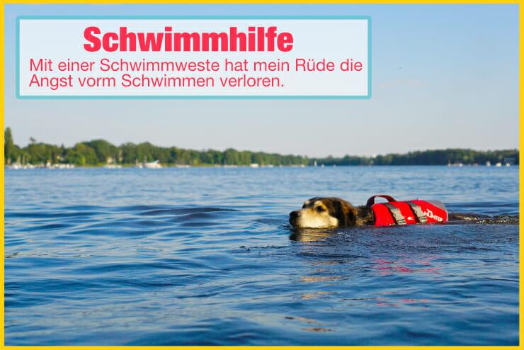 Hundeschwimmweste als Schwimmhilfe