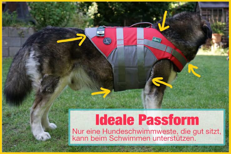 Hundeschwimmweste ideale Passform