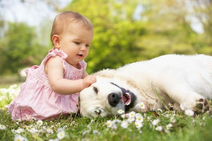 Kind und Hund - Zeckenschutz ohne Chemie