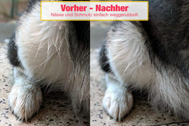 Vorher Nachher Vergleich mit Hundehandtuch