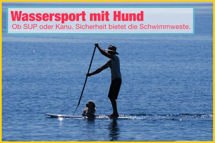Wassersport mit Hund