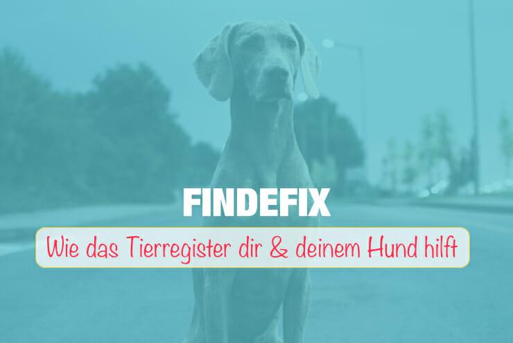 Findefix Tierregister