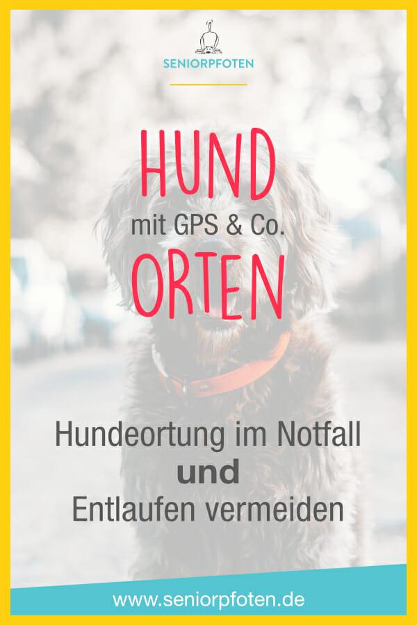 Hundeortung - Hund orten mit GPS Tracker und Co