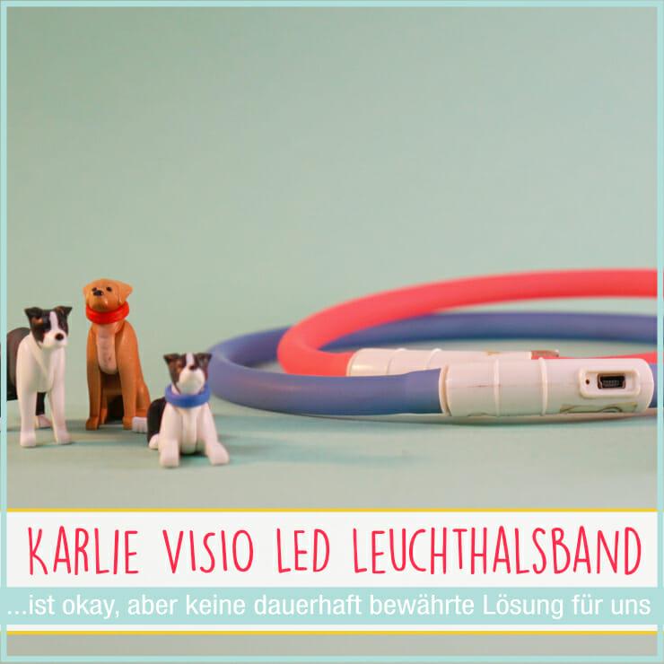 Karlie Visio LED Leuchthalsband Hund