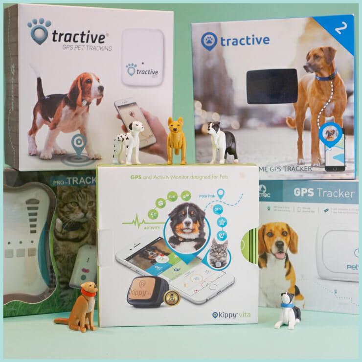 GPS Tracker Hund Test
