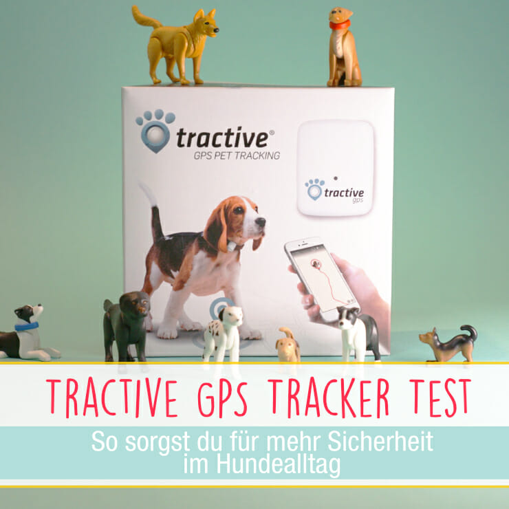 Tractive GPS Tracker fuer Hunde