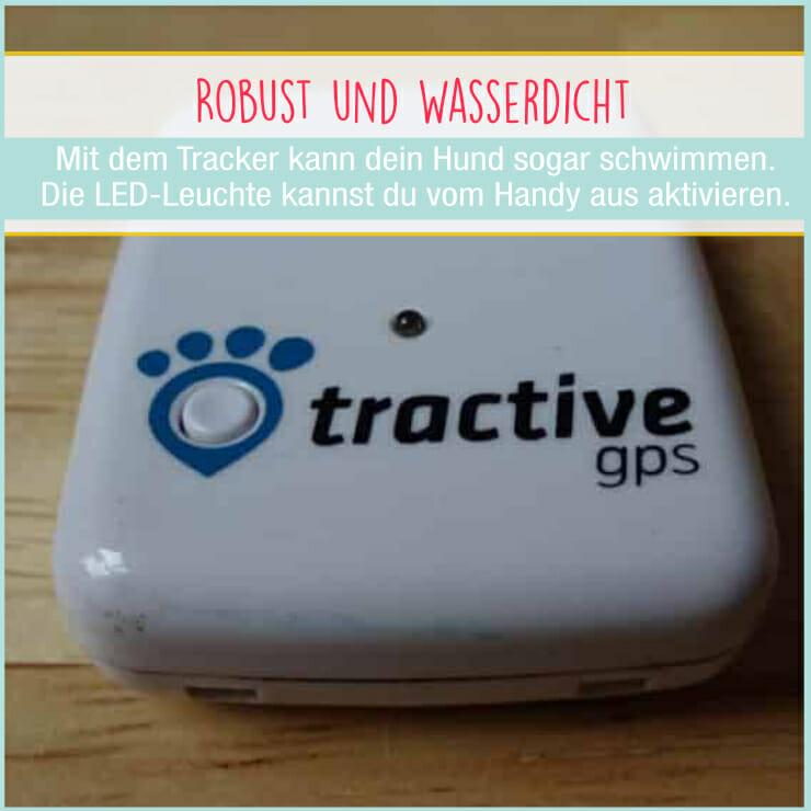 Tractive GPS für Hunde - Detailansicht