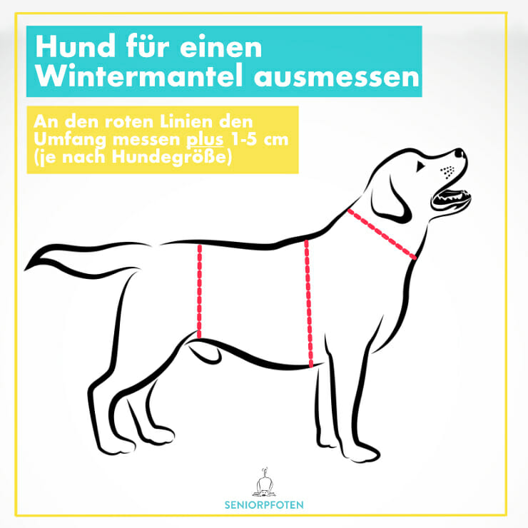 Hundemantel Winter - Hund ausmessen