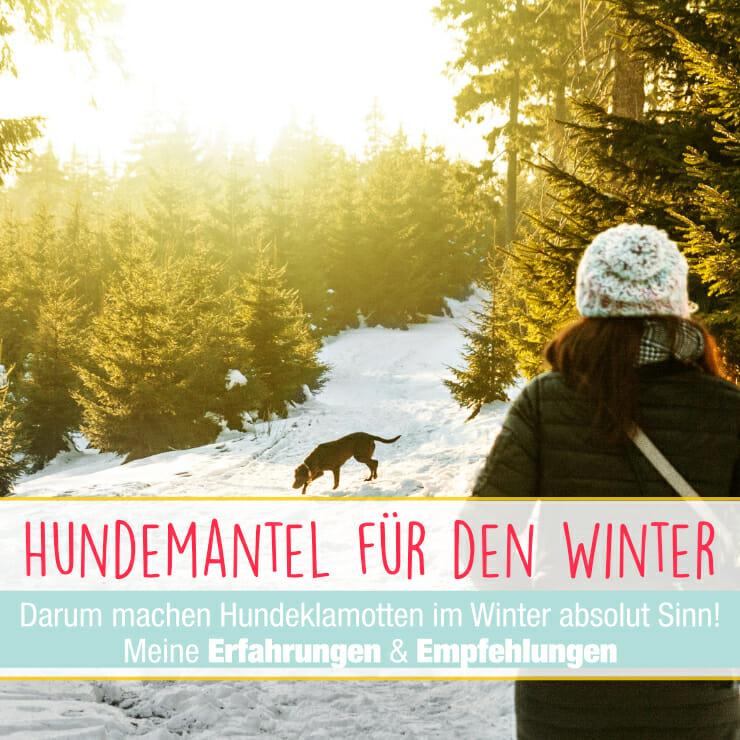 Hundemantel Winter