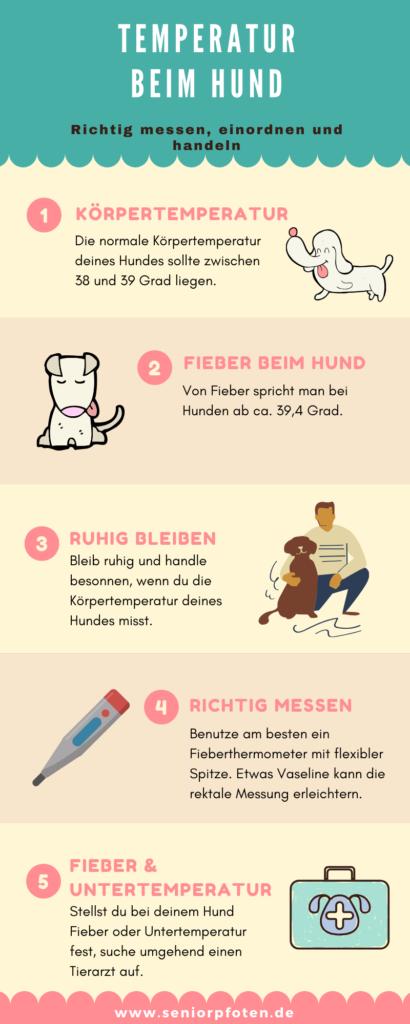 Infografik - Temperatur beim Hund